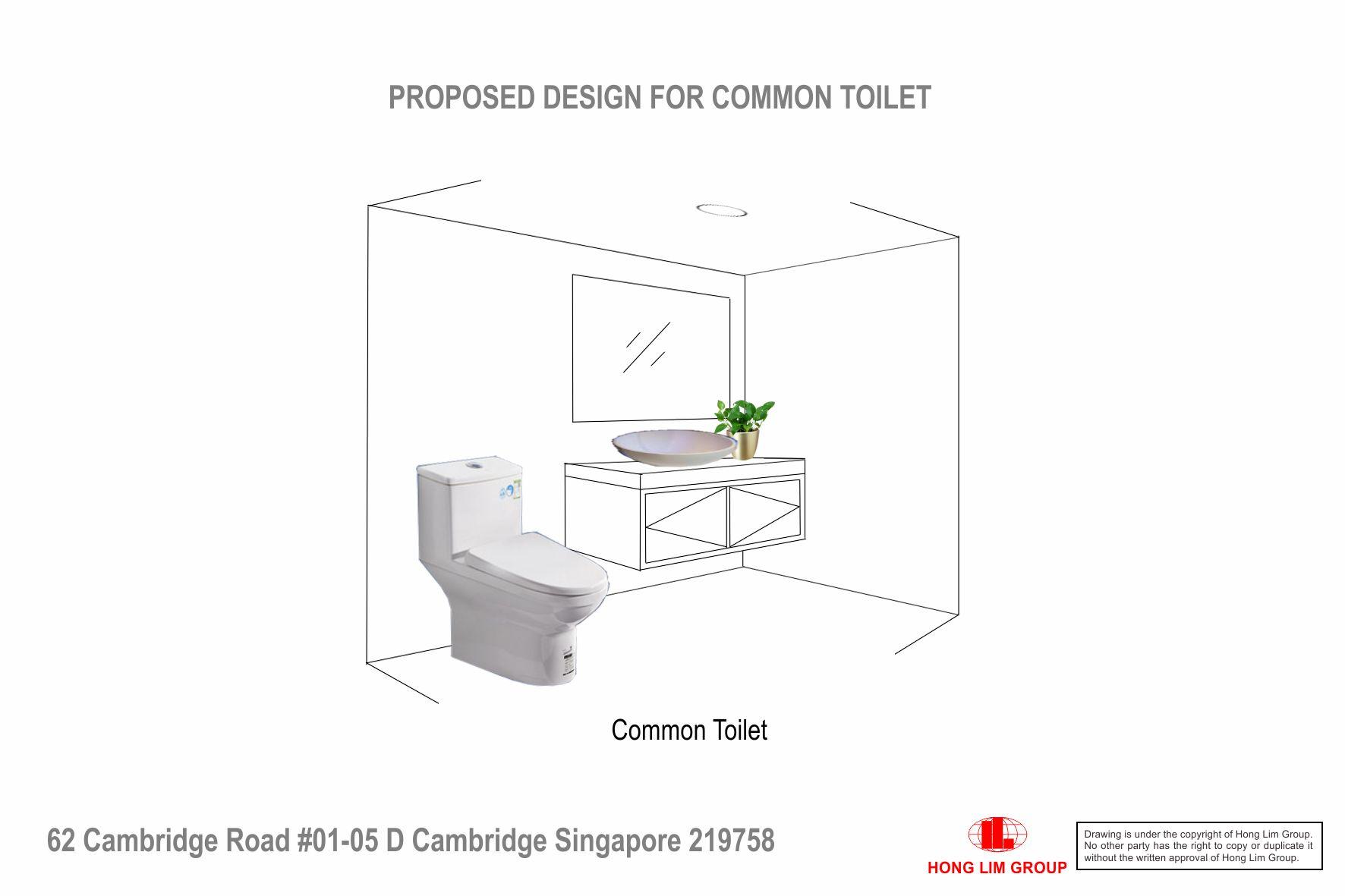 Common Toilet Vanity